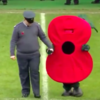 Football mascots doing Remembrance Day : the big furry Poppy
