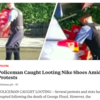 Police looting Nike trainers in Chicago has nothing to do with race or the death of George Floyd
